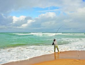 The surf beaches have been fishing really well. Photo courtesy Jarrod Day.