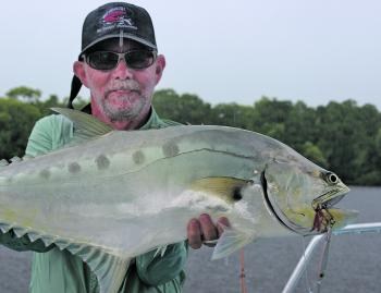 Visiting client Doug Coppernoll from the US enjoyed some good queenfish action on the Daintree River.