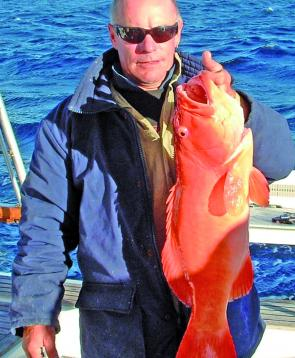 Lozza's coral trout hammered his squid bait while fishing the deeper reefs of Masthead.