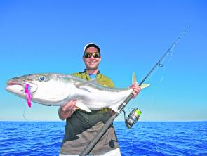 Tough customers like kingies, amberjack and Samson fish are all potential targets for larger blades fished deep over hard structure. Just be prepared to lose a few to these nasty beasts.