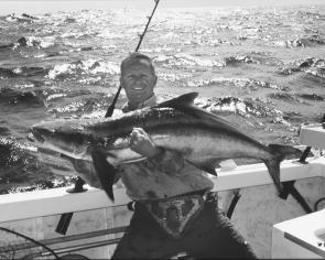 They may not be as big as this 30kg specimen but there is always the chance of cobia this month mixed with the kings.