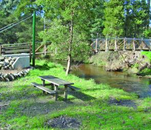 In contrast, many of the picnic facilities around the Latrobe River, in Noojee, are being upgraded and are great places to take taking the family fishing.