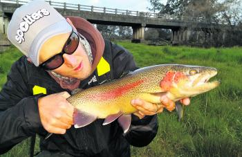 Whether using hardbodies, fly or drifting a bait your first cast should be hard up on the bank's edge.