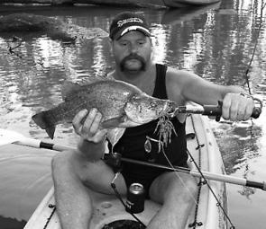 Ron Galvin with a nice Murray golden perch, caught on a Murray River Spinnerbait.