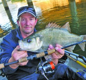 Matt Petrie with his surprise Estuary Perch from just inside the canal floodgates in the Patterson River. It measured 43cm fork length and 1.3kg, and was taken on a vibe underneath a boat hull.