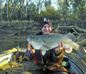 This is really what fishing from Shepparton is all about. Murray cod on lures.