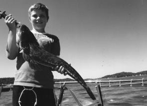 Luke with a lovely flathead caught on a prawn meant for a bream while drifting near Mackeral Beach.