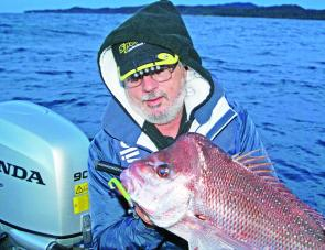 "The Editor with a tidy 3kg Wooli snapper which took a 5"" Gulp cast on light bream gear close to shore."