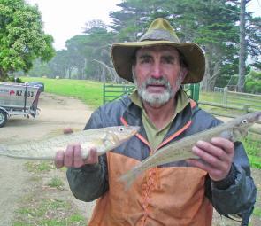 The author with a decent whiting caught at Flinders. Cat Bay is producing the best.