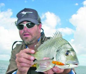 This bream was caught on the new Ecogear PX45 around Mud Island. Theses lures will be available in shops late January.