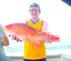 Reds will be on in February and be a tasty target for reef fishers