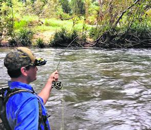 Chaos ensues as Tom battles a North Queensland sooty grunter in the fast water!