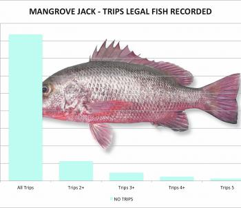 Overall mangrove jack caught per trip 2000-2015 Statewide (Suntag data).