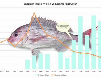 Trips where >=4 legal snapper caught per trip 2000-2015 by Year Statewide (Suntag data).