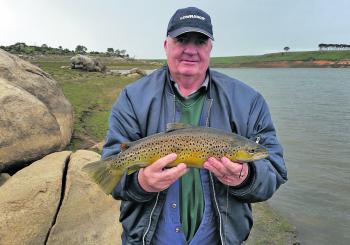 Brian Rivett caught this Tullaroop Reservoir brown trout on salted whitebait.