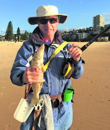 Rob Marich with a stonker whiting from Manly beach. We caught 5 bream and five whiting on this occasion.
