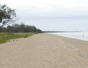 It's not hard to understand why Moore Park is renowned for it's wide beaches.