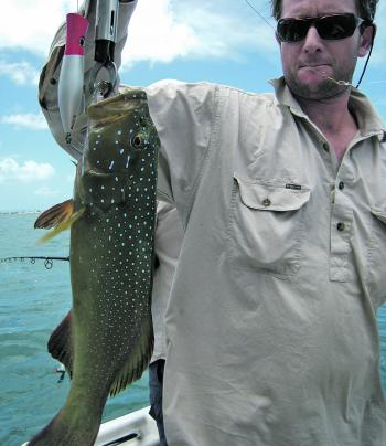 A decent coral trout taken on a popper over shallow reef.