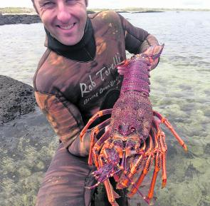 Aaron Mitchell with a great winter lobster. That'll warm up your tummy.