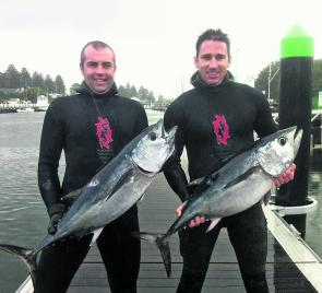 Shane Harrison and Danny Henricks with a couple of Port Fairy school tuna, some of the hardest targets for spearfishers going.