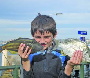 Wharves are great places for youngsters to learn to catch fish – properly supervised.