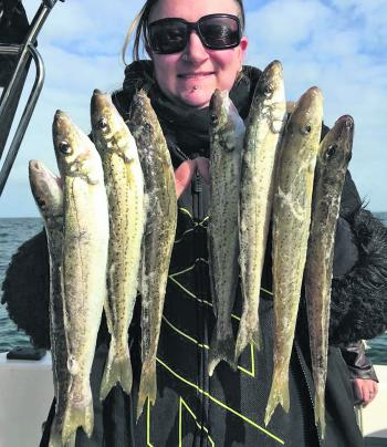Here is proof that the whiting are already in great numbers on the Middle Spit!