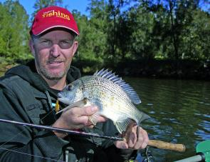 Bream numbers are quite good, though you may have to head up river a little to find them.