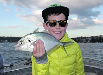 Trevally can be caught all through winter but are at their peak in spring.