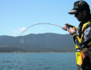 Even with a light drag setting, a light rod will still have some serious curve when a monster fish is on the end.