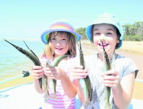 Some tuna oil and fish frames make great garfish berley, and the results will keep the kids very happy.