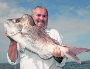 There are a few nice snapper about but you will have to work hard for them.