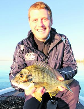 Bream have been on their seasonal spawning run with good numbers being caught in all corners of the bay.
