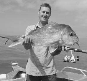 Many of the snapper being caught are in the 1-2kg bracket, but some better specimens up to 4kg are keeping the anglers interested. (Photo courtesy of Craig Seignior)