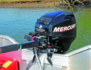 The Mercury 20hp four-stroke was plenty powerful enough.