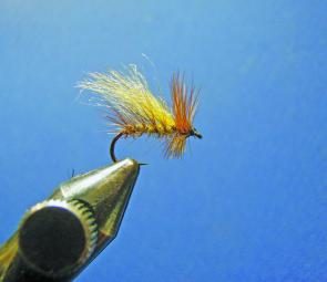 Wind on the hackle, secure in and tie off, whip finish and apply a drop of head cement. Clip the underside as shown. Also trim the top of the wing..