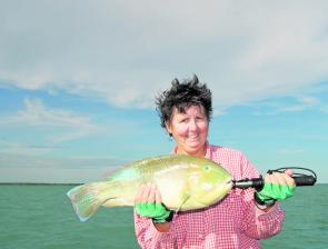 The reef fishing at Sweers Island was awesome last year with plenty on offer, like this tusk fish.