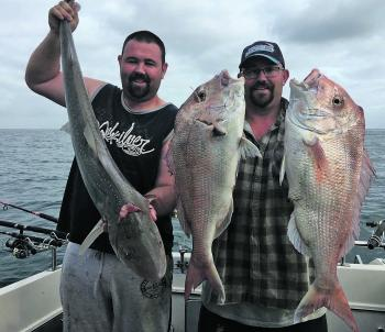 Danny has been catching plenty of snapper off Clifton Springs.