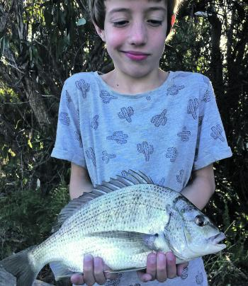 Hudson caught this ripper bream from the Anglesea River.