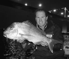 There are still good pinkie snapper being caught in the lower Yarra River. They are only too happy to slam a soft plastic (photo: Brent Hodges).