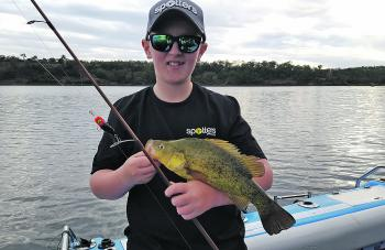 It's hard to beat a small black lure for fishing Cooby Dam. Blake Ehrlich caught this yellowbelly late in the afternoon along the weed edge on a Poltergeist in blood nut colour.