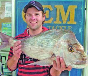 Snapper are a hard fighting, delectable fish that are well worth targeting on light gear.