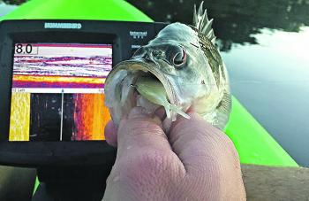 Keeping a close eye on the sounder while trolling is a good way to locate schools of bass.