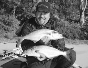 Big winter tailor like these kilo-plus models love the cold water at this time of year.