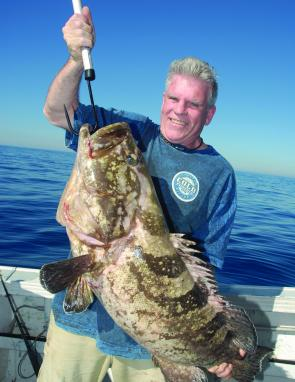 Ralph Wilkinson caught this fantastic cod off the 36-fathom reef.