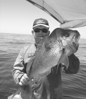 When the snapper start to get this big, they are well worth the effort and drama at the boat ramps.