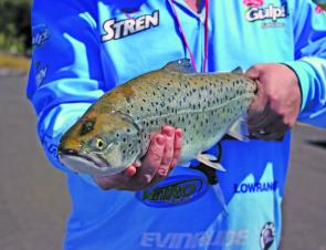 Big trout are a feature of the cooler months, as Andy McCarthy shows here.