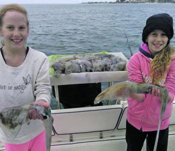 After a slow start and some colour changes, Laura and Amelia managed a great bag with some bigger models mixed in off Portarlington. There definitely seems to be plenty of squid around at the moment, both locally and down the southern end of the bay.