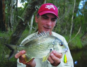 The author with another lake bream taken on a popper cast over shallow weed beds early in the morning.