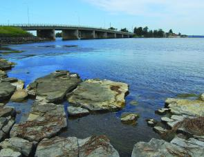 The shallow, rocky points on the southern side of Toukley bridge are ideal bream habitat, although there are a number of other similar areas around Tuggerah Lakes.