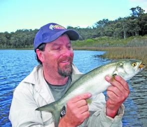 Tailor are back for winter and taking surface lures meant for bream.